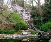 Photo of Lithia Park - Ashland, OR