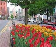 Photo of Downtown Albany FreeNet - Albany, NY