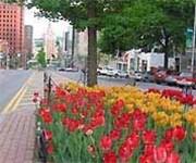 Photo of Downtown Albany FreeNet - Albany, NY